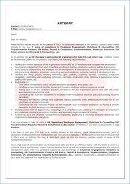 Sample Cover Letter Customer Service Inspiration Sample Application Letter For Customer Service Representative 48