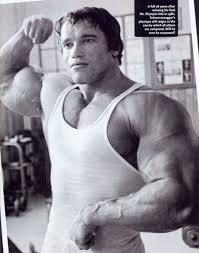 arnold schwarzenegger s workout routine
