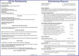 a curriculum vitae format scholarship resume format stylish idea it cover letter sample jospar