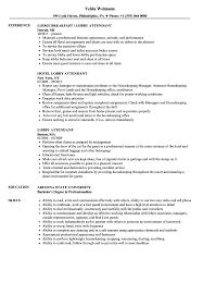 Lobby Attendant Sample Resume Lobby Attendant Resume Samples Velvet Jobs 1