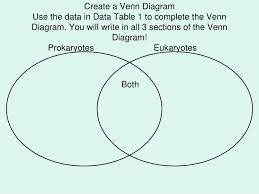 A Venn Diagram Of Prokaryotic And Eukaryotic Cells Ppt Prokaryotic Versus Eukaryotic Cells Powerpoint Presentation