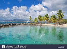 Tropical island of Caribbean sea Stock ...