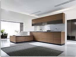 Modern Kitchen Cabinet 8 Large Spacious Designs Modern Kitchen