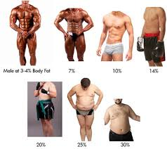 Body Fat Percentage Guide Bmicalculators Com
