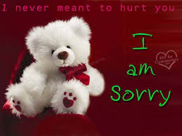 teddy i never meant to hurt you i m sorry image