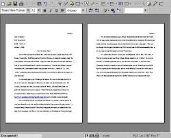narrative essay papers about family reunion