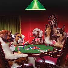 dogs playing parody