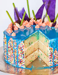 Birthday Cake The Ultimate Cake Creation Tatyanas Everyday Food