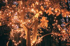 Tree Light Decoration