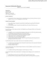 Sample Resume For Insurance Underwriter Assistant