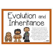 Evolution and Inheritance | Science | KS2