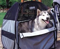 portable dog backpack