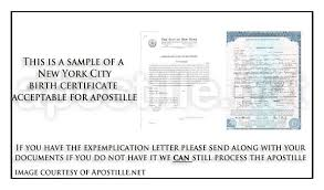 Letter Of Exemplification All About Letter Examples