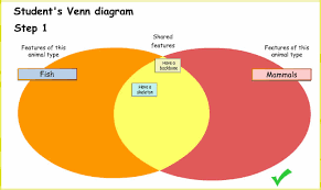 Endothermy Vs Ectothermy Venn Diagram Animal Classification Assessment Teacher Guide