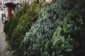 Home Depot. Christmas trees for sale The 8 Best Places to Buy a Tree of 2019