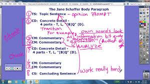 Schaffer Body Paragraph