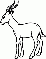 Small Picture 16 best Gazelle Coloring Pages images on Pinterest Homework Pre