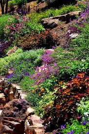 Small Picture 89 best Water Wise Gardening images on Pinterest Water wise