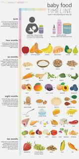 14 Month Old Baby Food Schedule Healthy Food Recipes To