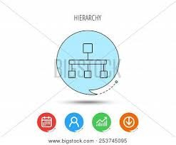 Bubble Organizational Chart Hierarchy Icon Vector Photo Free Trial Bigstock