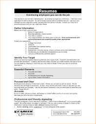 First Job Resume Template Format Word Document Cv Student 624