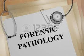 forensic pathologist forensic pathology 101 all you ever wanted to know but were afraid