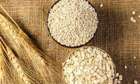 They believed that barley bread contributed to the athlete's overall strength. Benefits Of Barley And Its Side Effects Lybrate