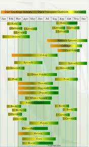zone 8 vegetable planting calendar
