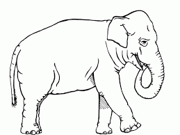 Small Picture Get This African Elephant Coloring Pages Free Printable 89631