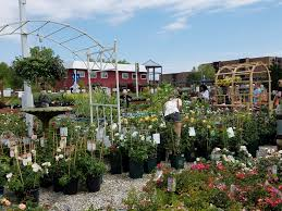 garden center services chicago il designs