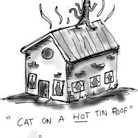 top new cat on a hot tin roof essay cat on a hot tin roof essay