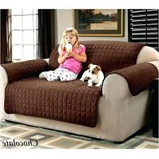 Dog friendly furniture Modern Ideas Dog Friendly Couches And Furniture Sofa Lovely Cover Inspirational Faux Suede Pet Best Of Artoflivinggreenco Decoration Ideas Dog Friendly Couches And Furniture Sofa Lovely