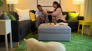 Ikea For Living Room Living Room Ideas For A Sun Room Makeover Family Reaction Ikea