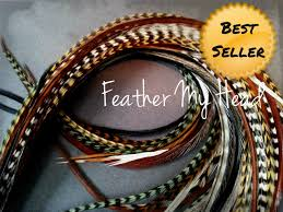 Dream Catchers Hair Extensions Colors Feather Hair Extensions Dream Catcher Natural Variety Color Pack 27
