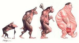 21st Century Evolution Chart I Find It Kind Of Funny