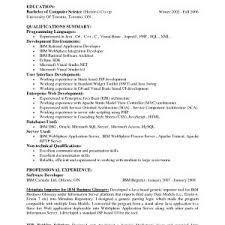 Professional Summary Resume Examples For Software Developer Elegant ...