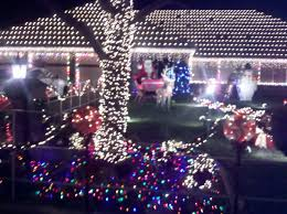 Thoroughbred Christmas Lights Ocean In A Cup Thoroughbred Street Goodbye