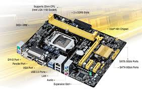 h81m d motherboards asus