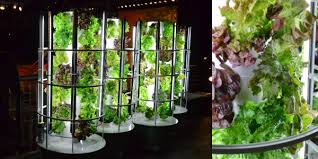 hydroponic tower garden. Very Attractive Hydroponic Tower Garden Sprawlstainable The Rain Vertical