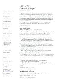 Resume Template For Sales Marketing Resume Sample Sales Amp ...