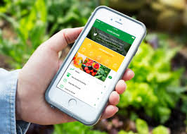 5 best apps for garden and landscaping