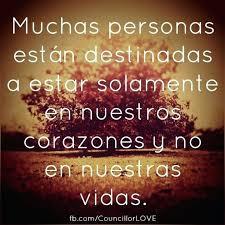 Spanish Love Quotes With English Translation Magnificent Spanish Quotes With English Translation Tumblr Awe Inspiring Cute