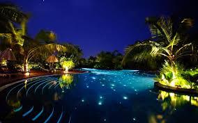 Landscape Lighting Repair Orlando Swimming Pool Underwater Lights Palm Lights Beautiful