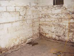 waterproof paint that s ugly stained and flaking off the basement walls