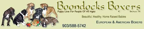 boondocks boxers saltillo texas sellers of beautiful healthy home raised well