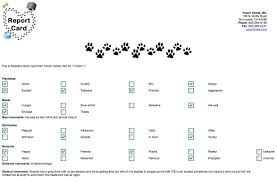 21 images of doggy daycare report card template