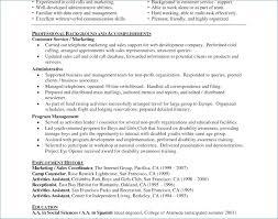 Resume Writing Services Nj Resume Layout Com