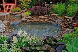 pond landscaping ideas water garden