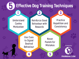 Dog Training Chart Dog Training Techniques That You Should Know