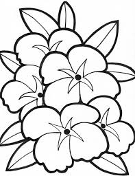 Small Picture 28 best flowers coloring pages images on Pinterest Flower